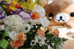花とクマー